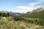 Backcountry hiking trail
